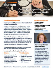 Internal Controls and Internal Audit Expert Certification Flyer