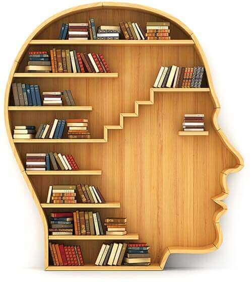 Head full of books